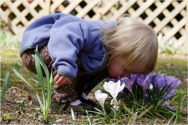 Ребёнок нюхает цветы