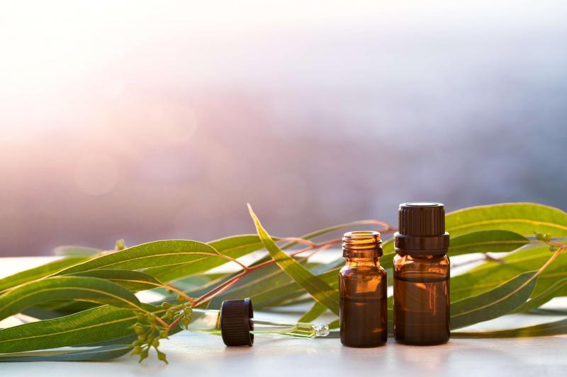 Эфирное масло эвкалипта – свойства и применение при беременности, для детей. Противопоказания, отзывы