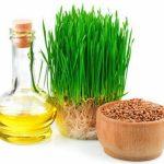 масло зародышей пшеницы, семена, ростки