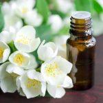 масло жасмина, цветок