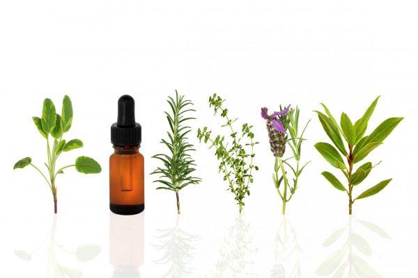 Травы и масло