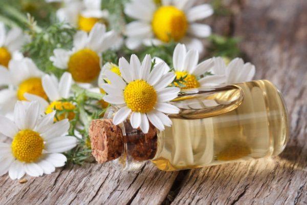 Эфирное масло в прозрачном бутыльке и цветы ромашки на деревянном столе