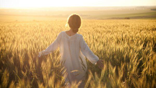 Девушка и пшеничное поле